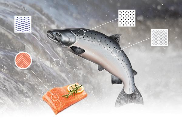 salmon wine
