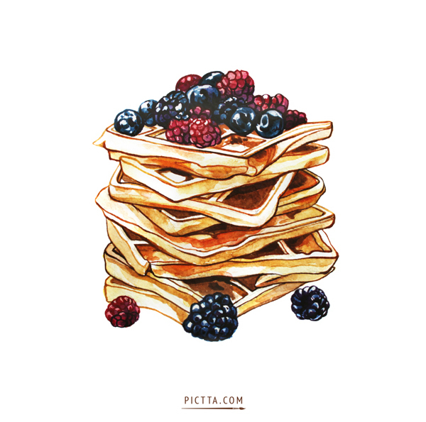 waffle food illustrations