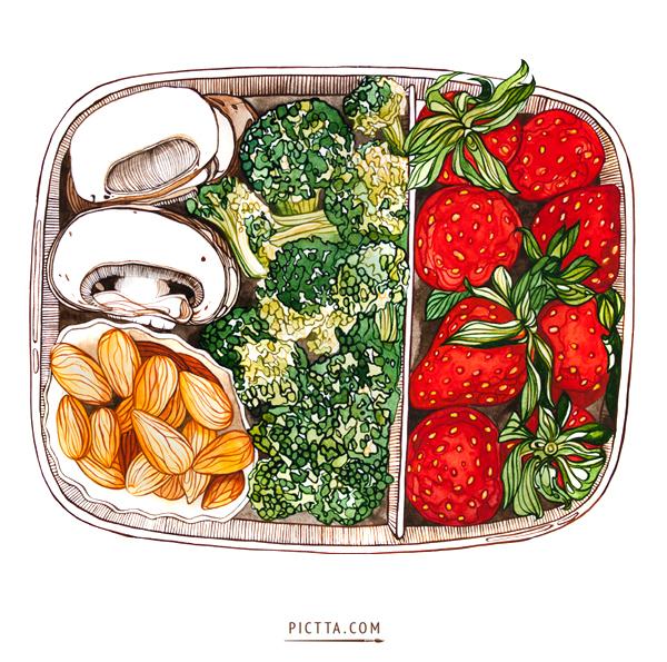 food illustrations lunchbox