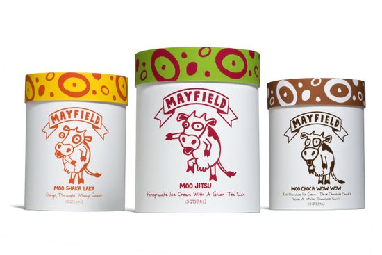 15 Ice Cream Packaging Designs