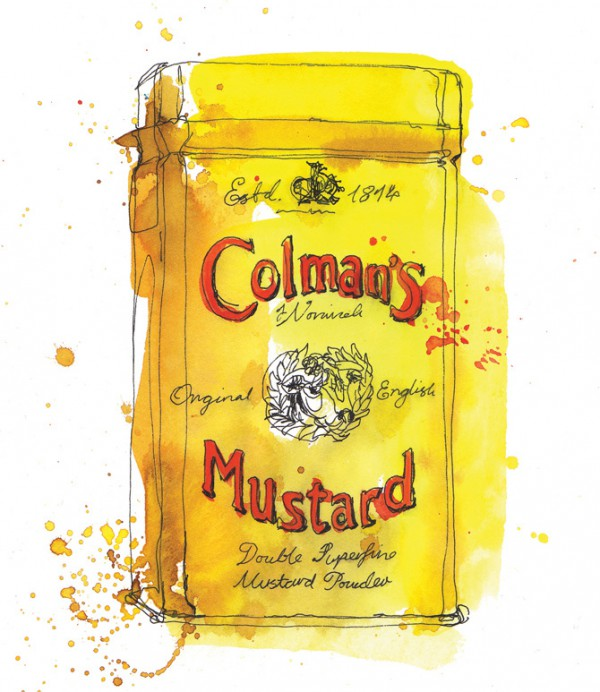 Colemans mustard painting, Watercolor food illustrations