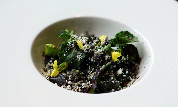 Kale and Broccoli with goat cheese snow, leek ash & liquorice