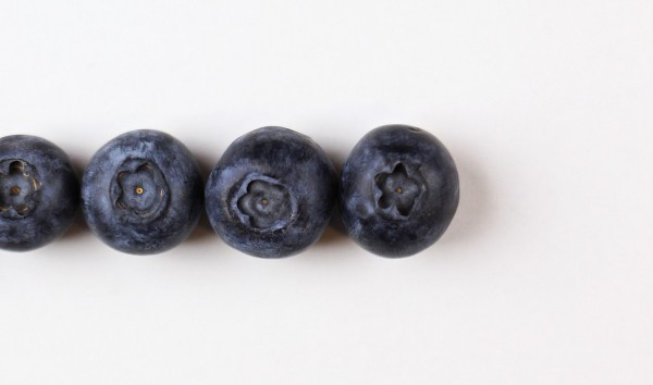 are blueberries and bilberries the same thing aterietateriet
