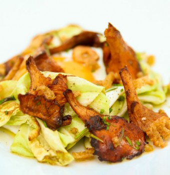 Fried Cabbage, Egg, Chanterelles, Herbs and Croutons