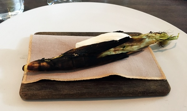 Eating at Noma - How I ate the most expensive lunch in my life and still walked away smiling.