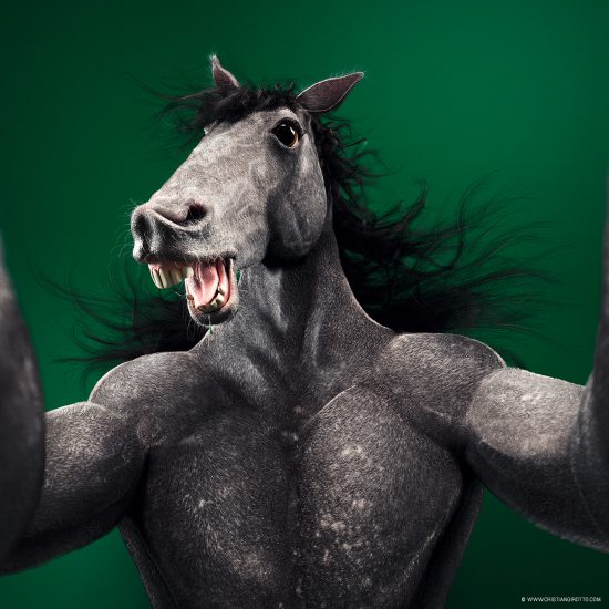 Animal Selfies Taken To The Next Level by Cristian Girotto