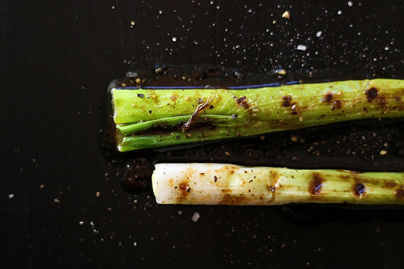 Grilled spring onions, close up