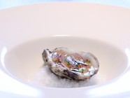 Oysters with grapefruit