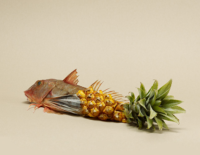fish and a pineapple