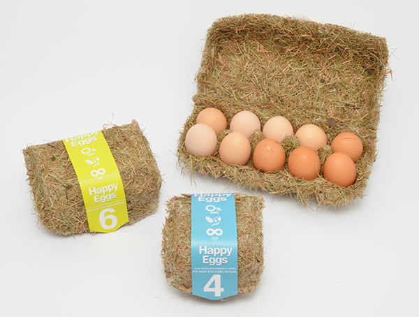 Creative Egg Packaging Designs - How To Package Eggs