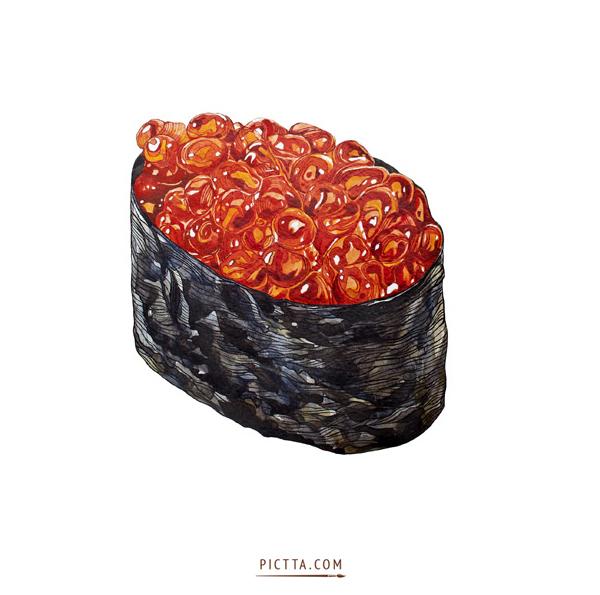 Sushi illustration food illustrations