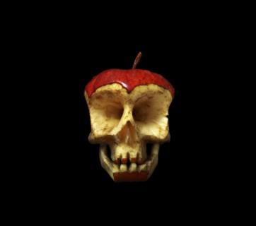 dimitri tsykalov apple skull