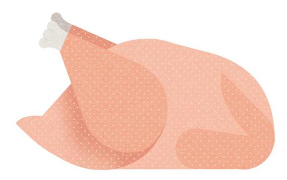 Minimalistic Food Illustrations