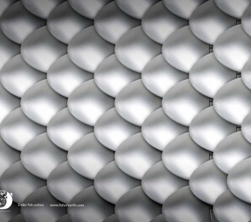 Creative ads for fish combines technology with fish scales - see them at Ateriet.com