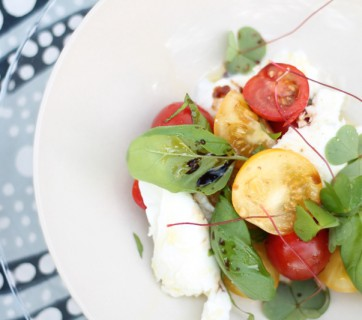 Mozzarella with Basil, Tomatoes and Wood Sorrel