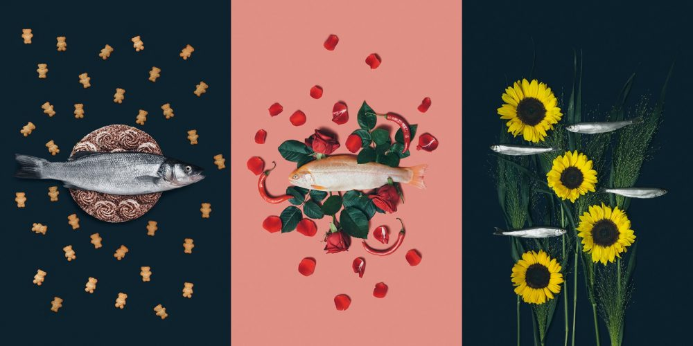 Amazing Fish and Flowers Photographs by Julia Potato