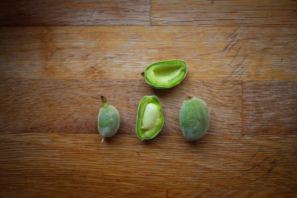 Green Almonds - Everything You Need To Know About Fresh Almonds