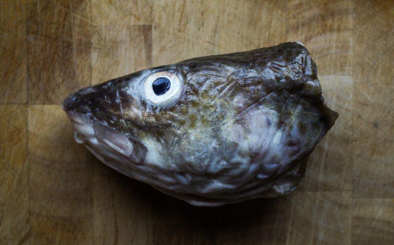 Fish May Prevent Parkinson's Disease