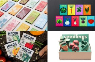 Seed Packaging Designs That You'll Love